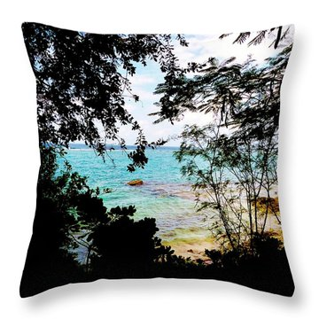 Throw Pillow featuring the photograph Picturesque by Amar Sheow