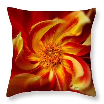Pinwheel Throw Pillow by Mary Jo Allen