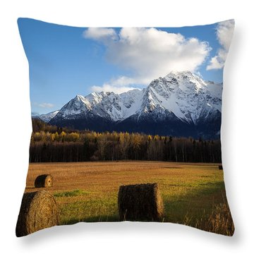 Throw Pillow featuring the photograph Pioneer Hay Fields by Tim Newton