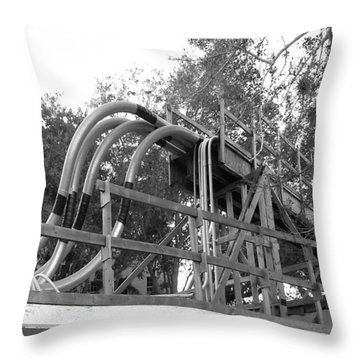 Throw Pillow featuring the photograph Piped Inn by Steve Sperry
