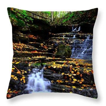 Pipestem Beauty Throw Pillow by Melissa Petrey