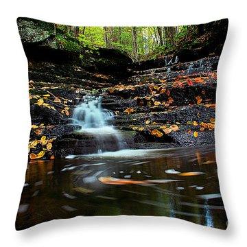 Pipestem Falls Throw Pillow by Melissa Petrey