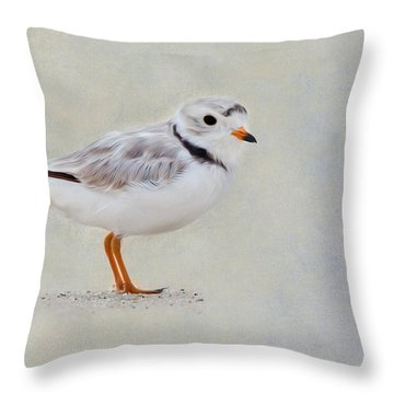Piping Plover Throw Pillow by Bill Wakeley