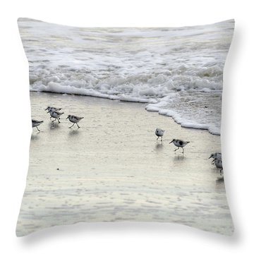 Piping Plovers At Water's Edge Throw Pillow