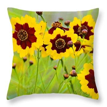 Plains Coreopsis Throw Pillow