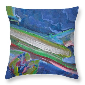 Plane Colorful Throw Pillow