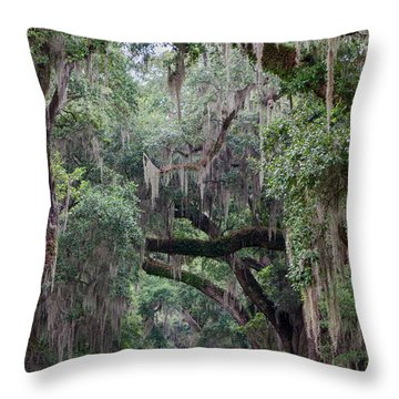 Plantation Path Throw Pillow