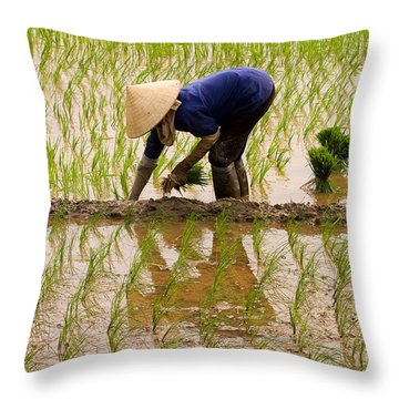 Planting Rice Throw Pillow by J L Woody Wooden
