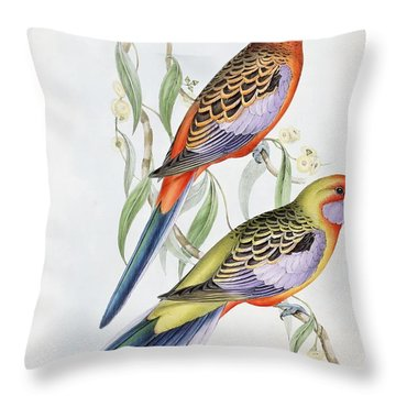 Platycercus Adelaidae From The Birds Of Australia Throw Pillow by John Gould