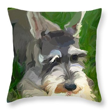 Play Ball Throw Pillow by Patti Siehien