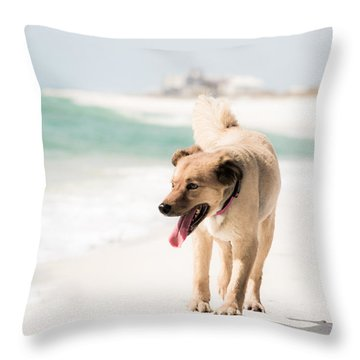 Play Buddy Throw Pillow by Shelby  Young