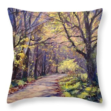 Play Of Light Throw Pillow by Bonnie Mason