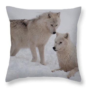 Throw Pillow featuring the photograph Play Time by Bianca Nadeau