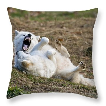 Throw Pillow featuring the photograph Playful Arctic Wolves by Wolves Only