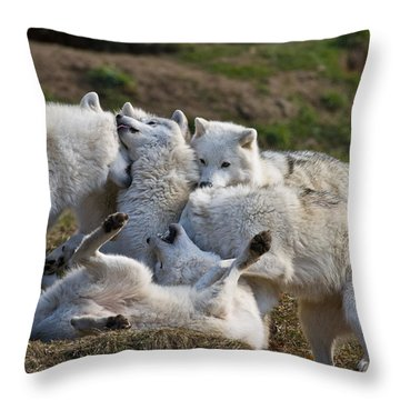 Throw Pillow featuring the photograph Playful Pack by Wolves Only