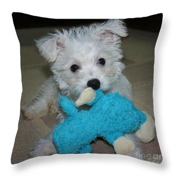 Playful Puppy Throw Pillow by Terri Waters