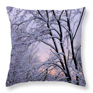 Playhouse Through Snow Throw Pillow