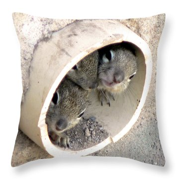 Playing In A Pipe Throw Pillow by Laurel Powell