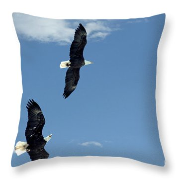Playing Tag Throw Pillow by Bob Hislop
