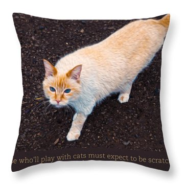 Playing With Cats Throw Pillow by Omaste Witkowski