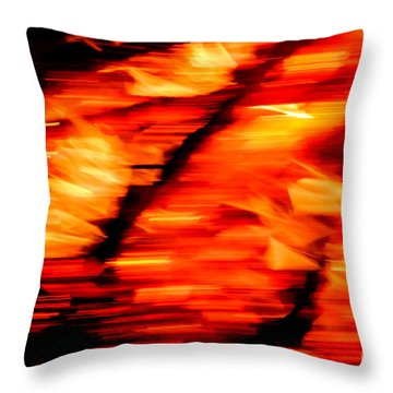 Playing With Fire 2 Throw Pillow by Cheryl McClure