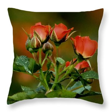 Pleasant And Peaceful Throw Pillow by Ramabhadran Thirupattur