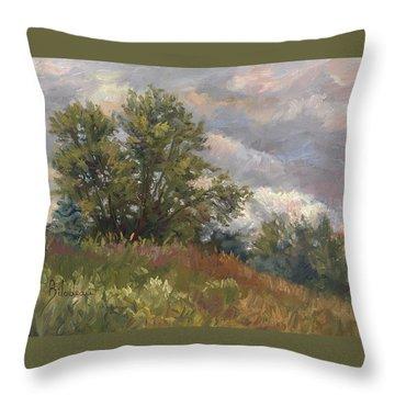 Plein Air - Near The Chicopee River Throw Pillow