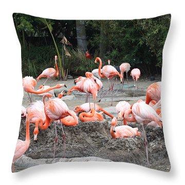 Plenty Of Pink Throw Pillow by John Telfer