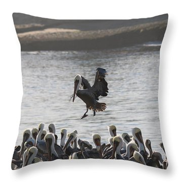 Throw Pillow featuring the photograph Plenty Of Room by Christy Pooschke