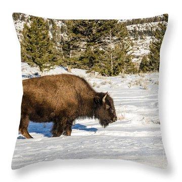 Plodding Through The Snow Throw Pillow
