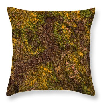 Plotzed Throw Pillow by Matt Lindley