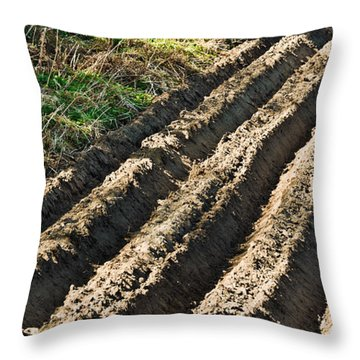 Ploughed Field Throw Pillow