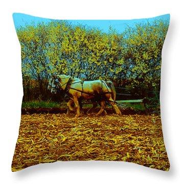 Throw Pillow featuring the photograph Plow Days Freeport  Tom Jelen by Tom Jelen