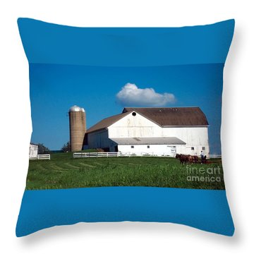 Throw Pillow featuring the photograph Plowing The Field by Gena Weiser
