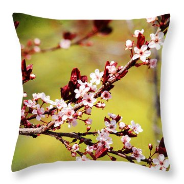 Throw Pillow featuring the photograph Plum Blossoms by Trina  Ansel