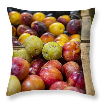 Plum Gorgeous Throw Pillow by Caitlyn  Grasso
