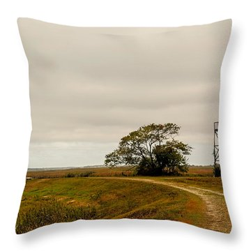 Plum Island Autumn Throw Pillow