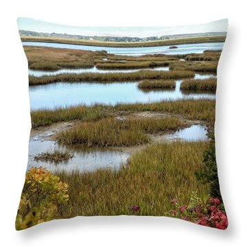 Plum Island Marshes In Autumn 2 Throw Pillow