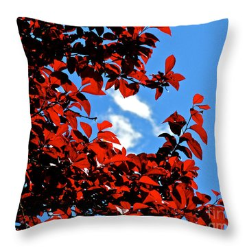 Plum Tree Cloudy Blue Sky 1 Throw Pillow by CML Brown