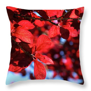Plum Tree Cloudy Blue Sky 2 Throw Pillow by CML Brown