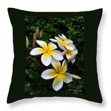 Plumeria In The Sunshine Throw Pillow by Kaye Menner