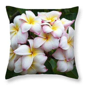Plumeria Throw Pillow