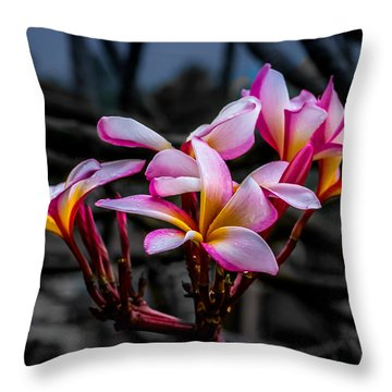 Plumeria Rainbow Ali Throw Pillow