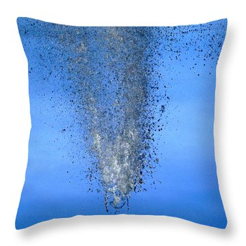 Throw Pillow featuring the photograph Plunge by Viviana  Nadowski