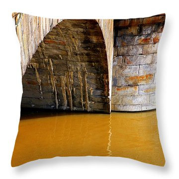 Po River Waters Throw Pillow by Valentino Visentini