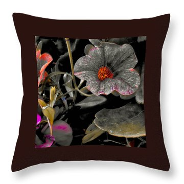 Throw Pillow featuring the photograph Pocket Of Orange by Thom Zehrfeld