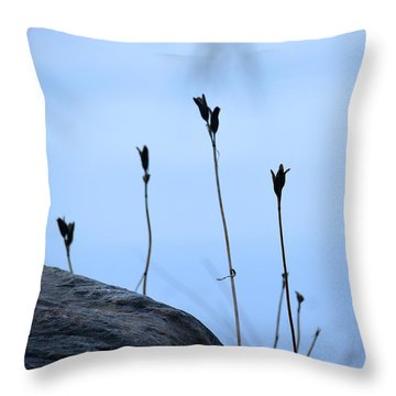 Pods On Pond Throw Pillow