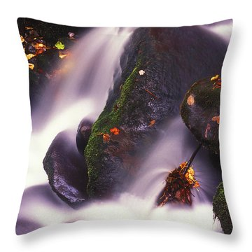Poetry In Motion - 290 Throw Pillow by Paul W Faust -  Impressions of Light