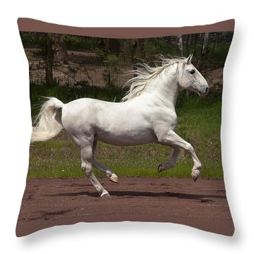 Throw Pillow featuring the photograph Poetry In Motion D5809 by Wes and Dotty Weber