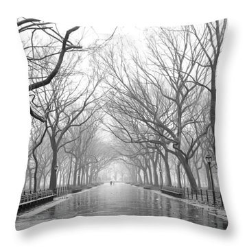 New York City - Poets Walk Central Park Throw Pillow
